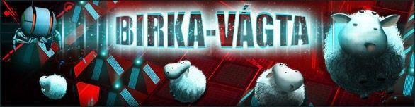 Birka-vágta